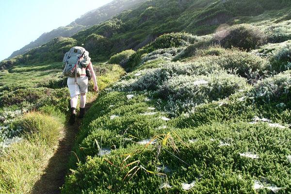 Eastern Cape - Tsitsikamma - Otter Trail - 112